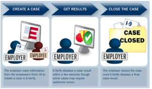 E-verify-Process